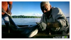 Jeremy Wade hand lines for a shark in the Solomon Islands in the River Monsters episode Killer Sharks and Rays.