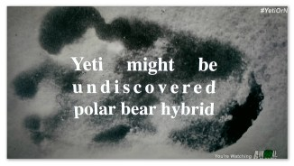 "Image of a footprint with text ""Yeti might be undiscovered polar bear hybrid"""