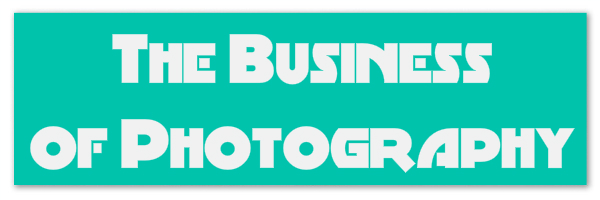 "Teal colored banner with text ""the business of photography"""