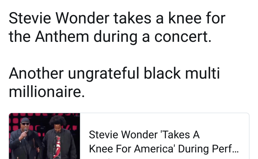 Joe Walsh & Stevie Wonder the Ungrateful Black®