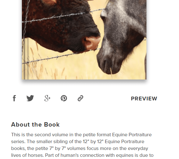 Equine Portraiture Books – the perfect gift for the horse girl in your life!