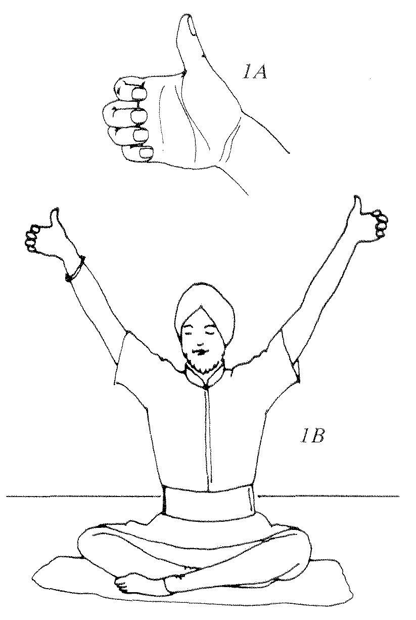 kriya elevación 1
