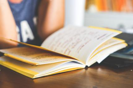 A school student looks at a book
