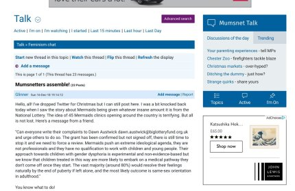 A screenshot of the Mumsnet thread started by Graham Linehan urging users to lobby the Big Lottery Fund to review its planned grant to Mermaids.
