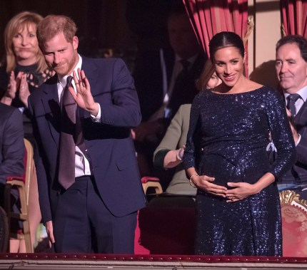 """Prince Harry and Meghan Markle attend the Cirque du Soleil Premiere Of """"TOTEM"""" at Royal Albert Hall on January 16, 2019 in London, England"""