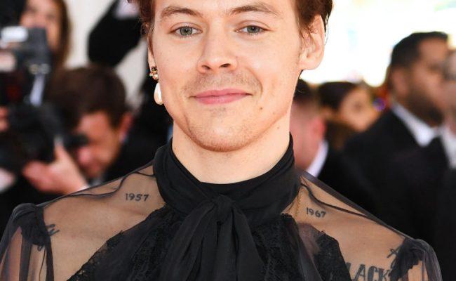 Harry Styles Channels His Best Camp Self In Met Gala Pink