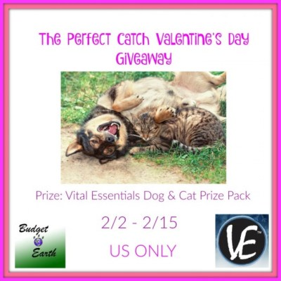 The Perfect Catch Valentine's Day Giveaway {US | Ends 02/15}