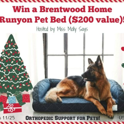 Brentwood Home Pet Bed Giveaway {US | Ends 11/25}