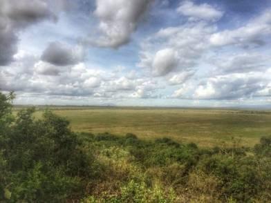 IMG 20150507 WA0024 01 - Een plog over Kenya, adoptie en olifanten.