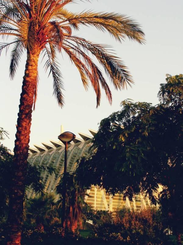 valencia 6 - Viva Valencia   Stad van Las Fallas, de Paella en Parque de Ciencas