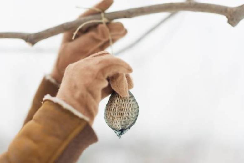 vetbollen maken