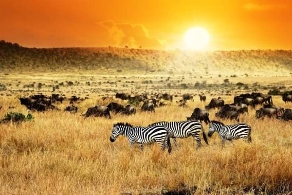 kenya - Mijn 5 top reisbestemmingen voor 2018!