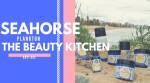 seahorse plankton by the beauty kitchen1 - Lekker eten bij TGI Fridays en een blind date met 7 vrouwen!