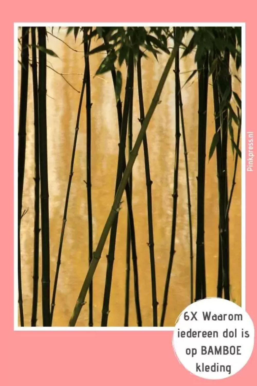 6 X Waarom iedereen dol is op bamboe kleding - 6 X Waarom iedereen dol is op bamboe kleding
