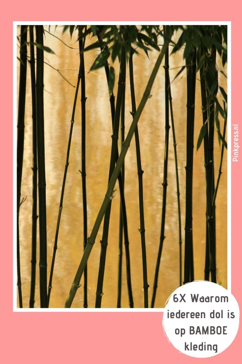 waarom bamboe kleding