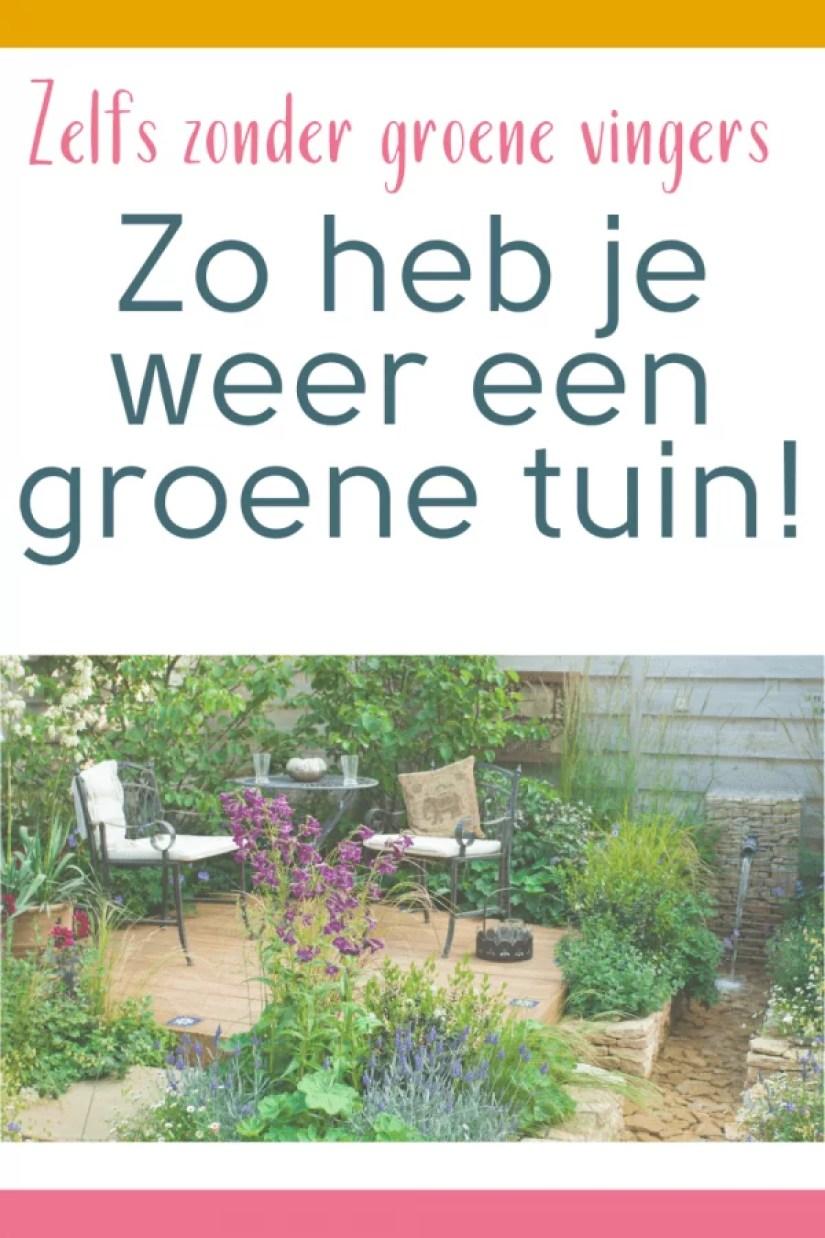 zo heb je weer een groene tuin
