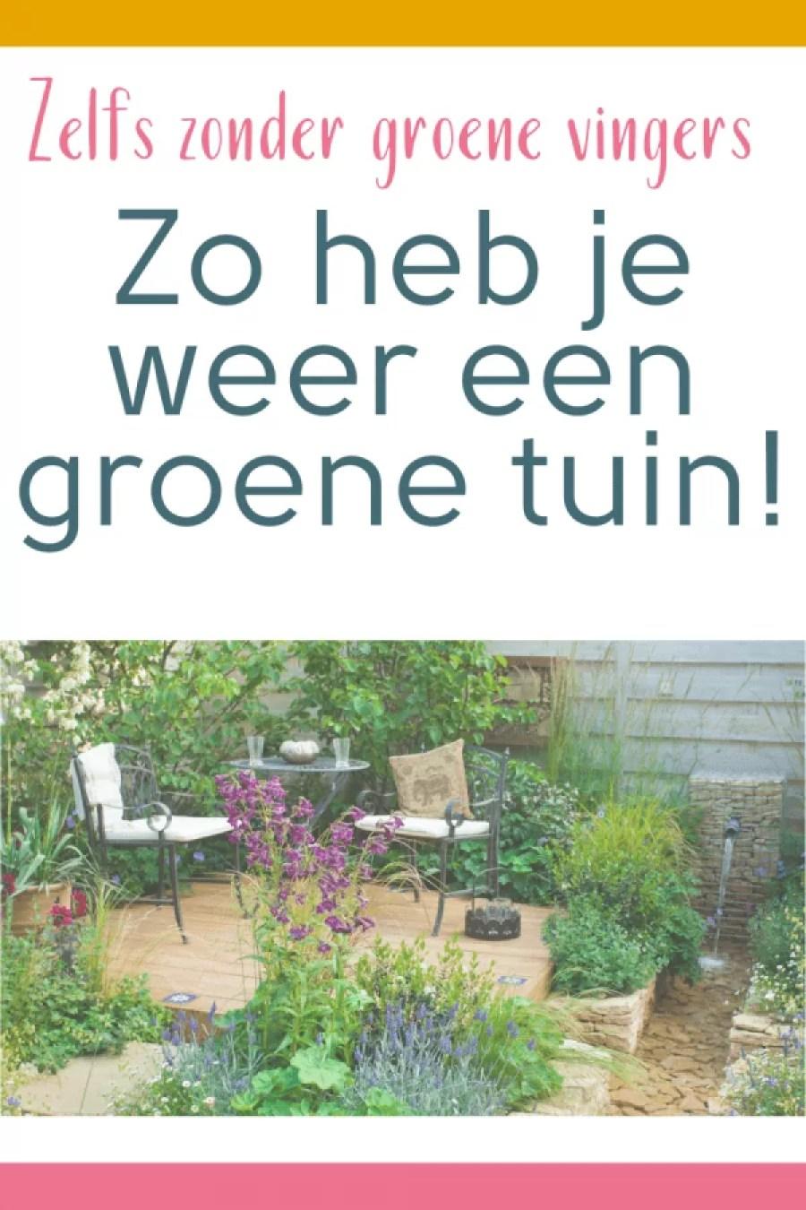 D79B2FA1 5C85 4DF2 B424 C932048786AE - Een landelijke groene tuin doe je zo!
