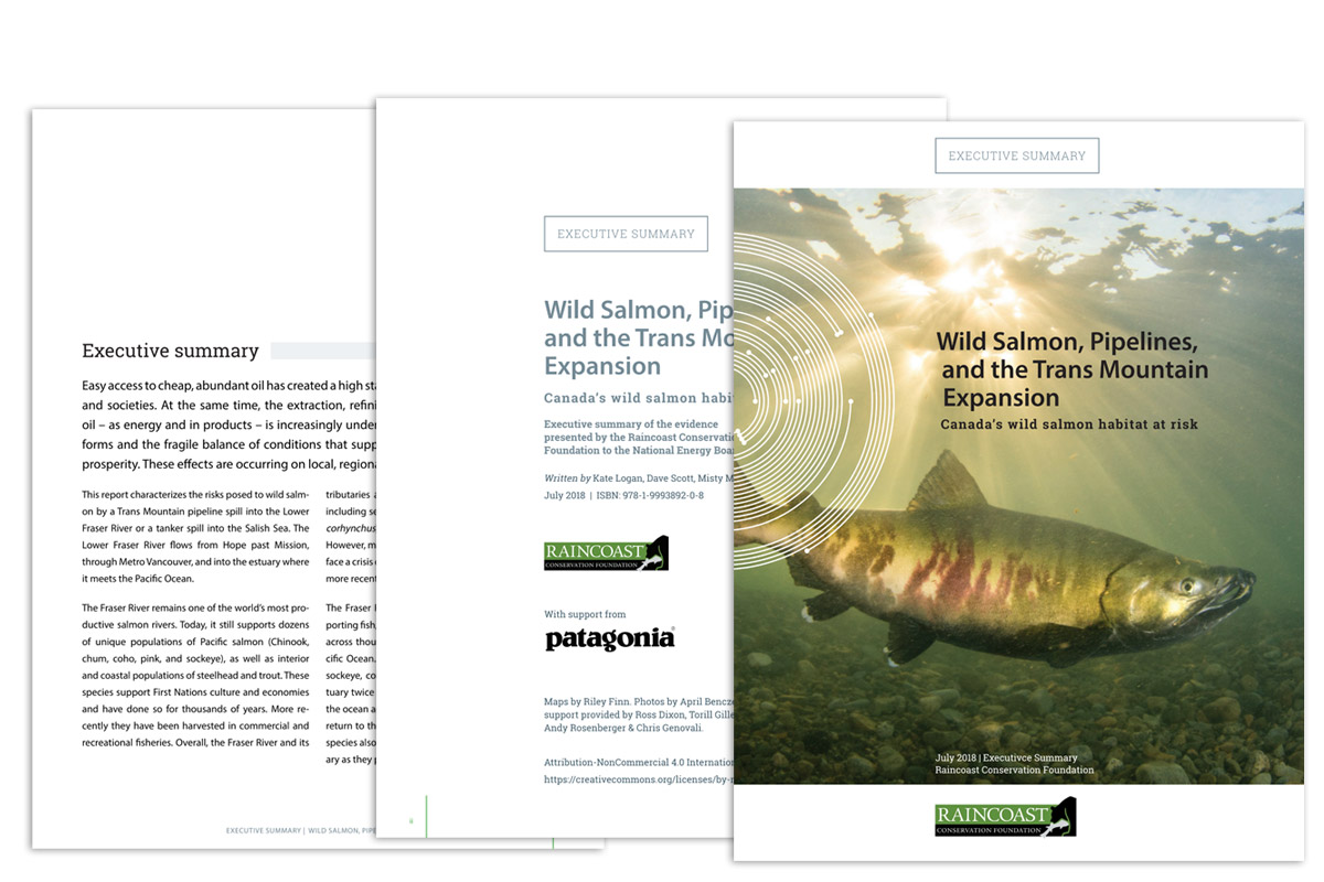 A cover and two inside pages are shown of the Raincoast Report: Wild Salmon, Pipelines, and the Trans Mountain Expansion
