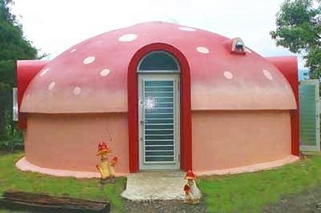 Espuma de poliestireno cúpula de la casa -
