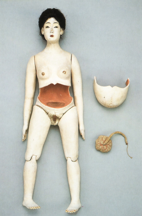Doll with placenta and umbilical cord