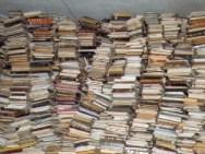 Solo per digitalizzare i libri francesi della Terza Repubblica ci vorrebbero dai 50 agli 80 milioni di euro