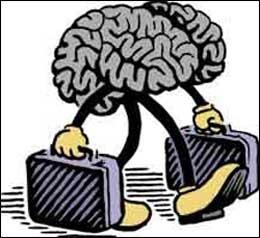 La fuga dei cervelli 3