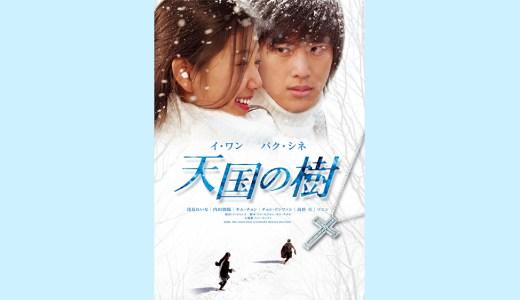 『天国の樹』無料動画配信チェック【1話〜最終回】韓国ドラマ