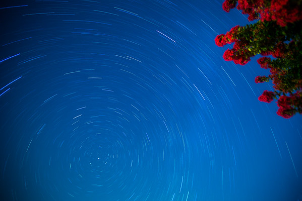 Star Trails over Ocean Pines, Maryland near Ocean City, Maryland