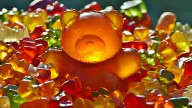 Photo of Why I Munch On Gummy Bears After Workout
