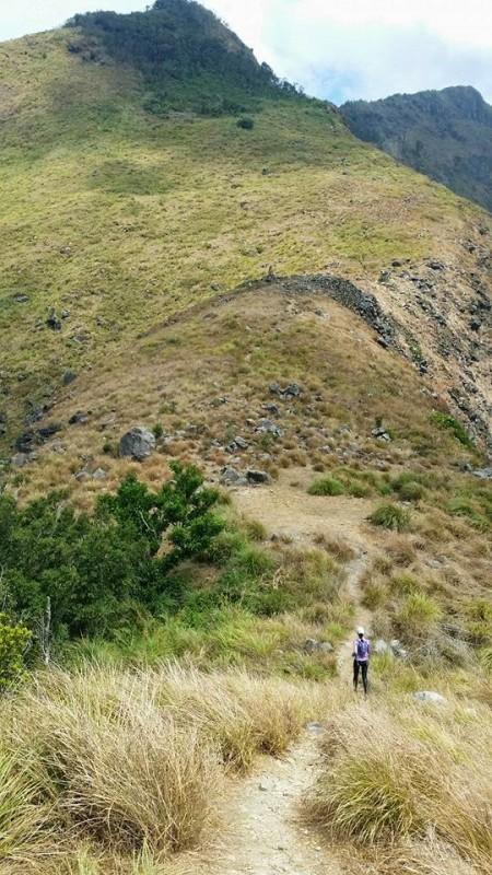 tarak-ridge-mountain-run-2014-poster