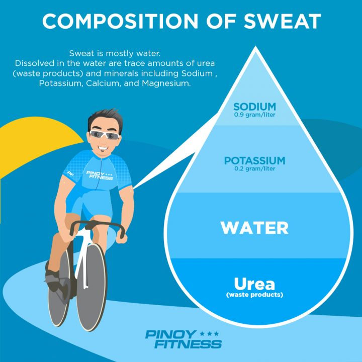 What Really Happens When You Sweat   Pinoy Fitness