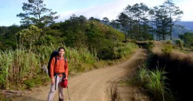 Mt. Pulag Ambangeg Trail itinerary (updated 2015)