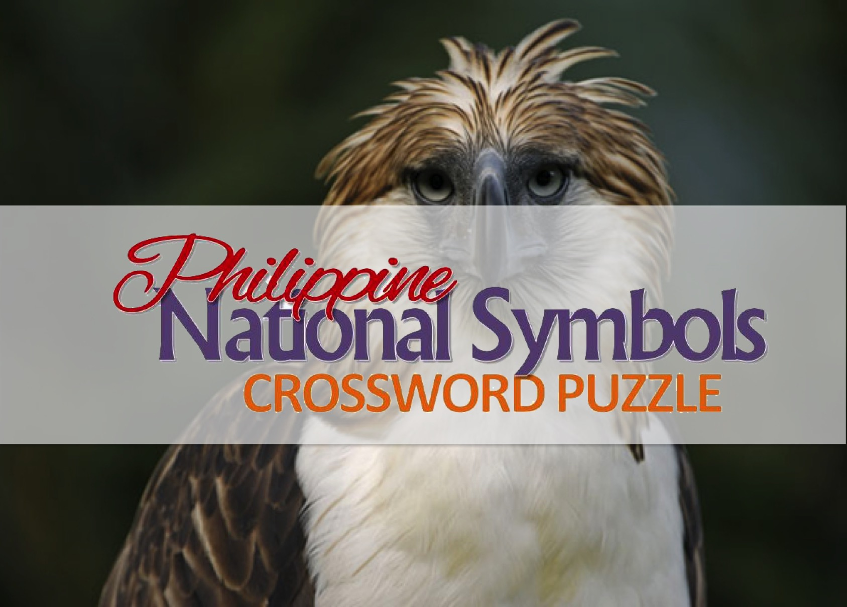 Activity Sheet Philippine National Symbols Crossword