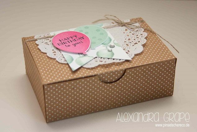 stampin-up_Verpackungen_party-pants-in-Partystimmung_pinselschereco_alexandra-grape_02