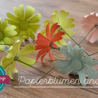 Quick-Tipp #6 – Papierblumen andrahten