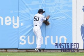 Zack Zehner collides with the outfield wall (Robert M. Pimpsner)