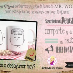 Sorteo Mr. Wonderful en Pintando Una Mamá