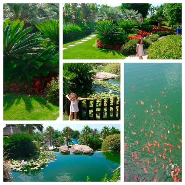Asia_Gardens_Experience