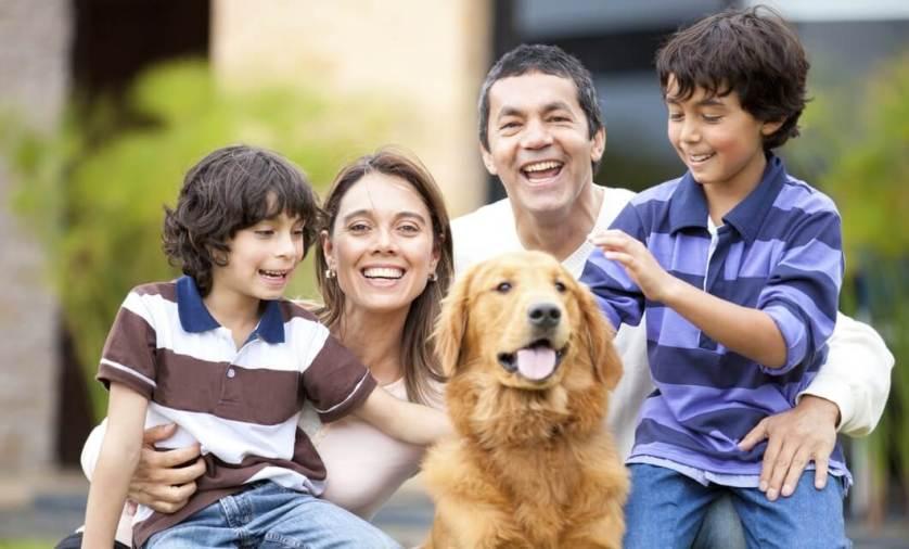 El mejor perro para familias