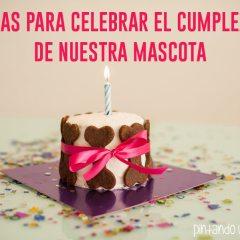 7 Ideas para Celebrar el Cumpleaños de Nuestra Mascota
