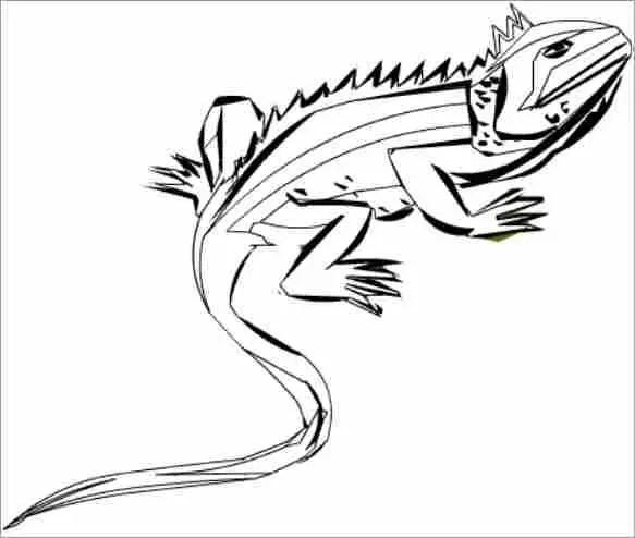 Iguana para colorear / Bisagras cazoleta