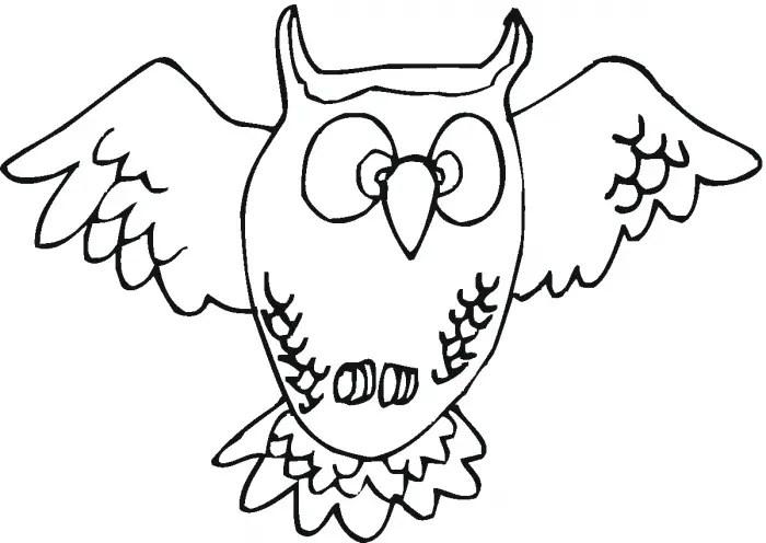 Dibujos Para Colorear De Animales Nocturnos
