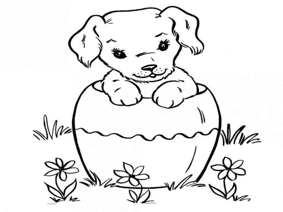 Dibujos de perritos bebes para colorear
