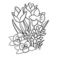 Dibujos Para Colorear Flores Grandes Dibujos De Flores Para