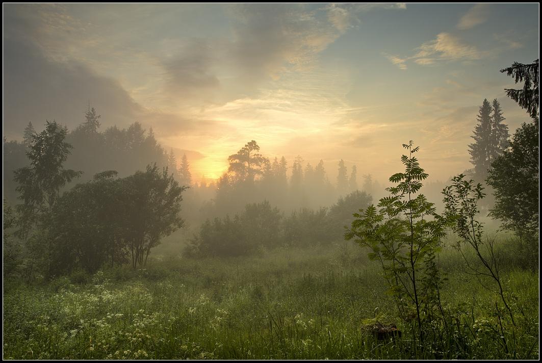 Pintar paisajes impresionantes a partir de buenas fotos  Pintura y Artistas