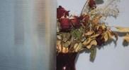 cny-Rayado5
