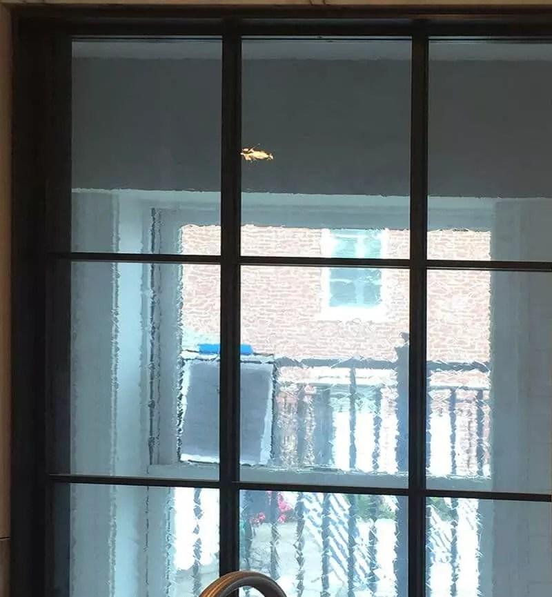 Artista Restoration Window