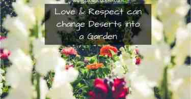 Love and respect can change deserts into a garden