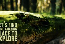 let's-find-some-amazing-place-to-explore