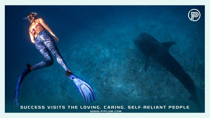 diving-with-sharks-blue-ocean-Success-visits-the-loving-caring-self-reliant-people-Motivational-quote